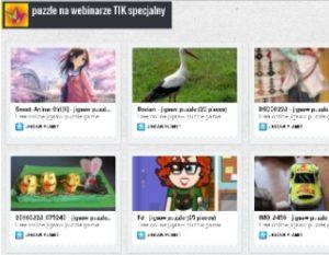 puzzlewebinarium7