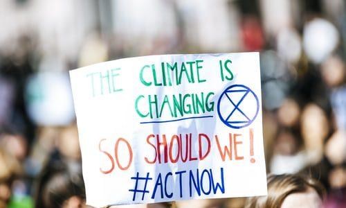 3 pomysły na lekcje związane z edukacją klimatyczną